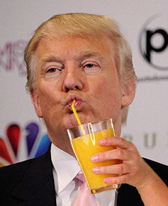 Scarfing down some OJ: about as alcoholic as it gets with Trump these days ...